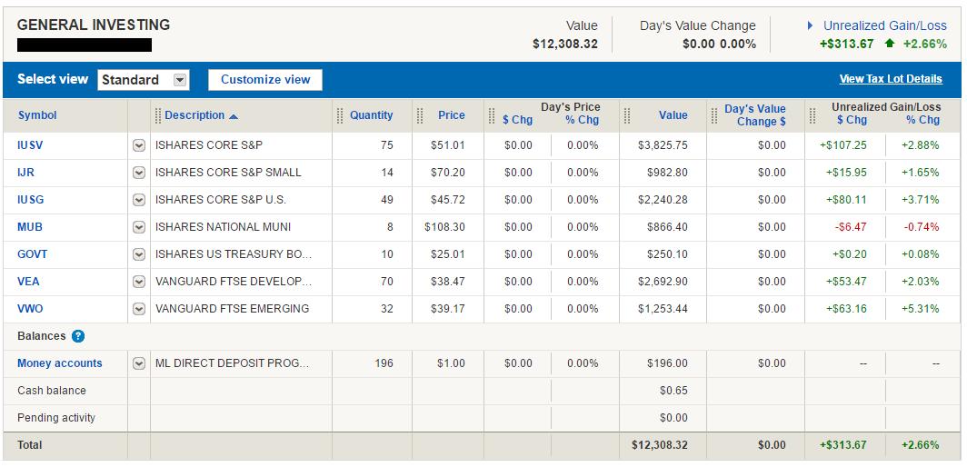 Merrill Edge Guided Investing portfolio holdings
